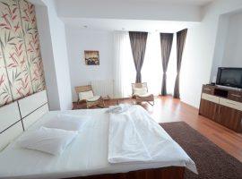 Mosilor3 Garsoniera in regim hotelier