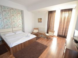 Mosilor5 Accommodation in Studio apartment  in regim hotelier in bucuresti