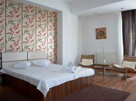 Mosilor1 Garsoniera in regim hotelier