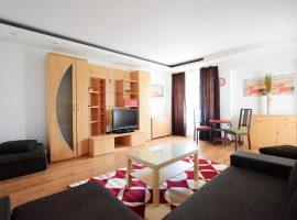 Apartament in regim hotelier COPOSU 11