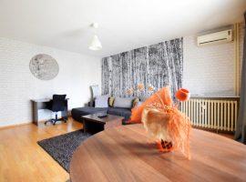 COPOSU16 Apartament in regim hotelier