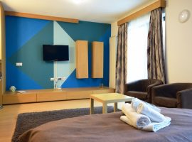 DECEBAL3 Accommodation in Studio apartment
