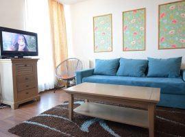 Apartament in regim hotelier Mosilor 6