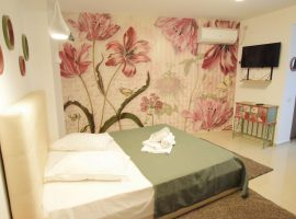 Accommodation in Studio Apartment DECEBAL 10