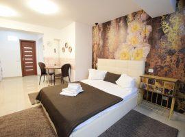Accommodation in studio apartment DECEBAL 11