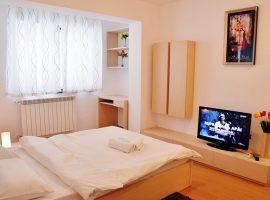 Garsoniera regim hotelier DECEBAL 6
